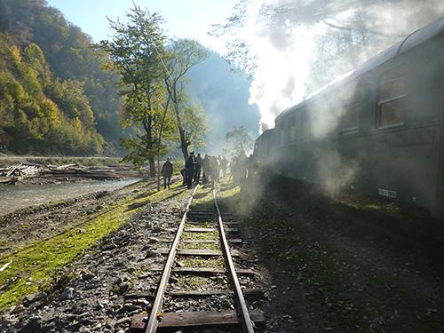 Train de Viseu de Sus