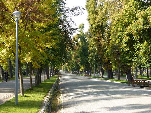 parc de Cluj en Roumanie