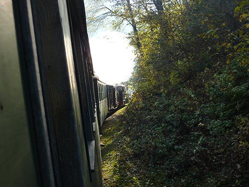 Le train à vapeur de Viseu de Sus